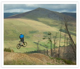 Innerleithen Mountain Biking