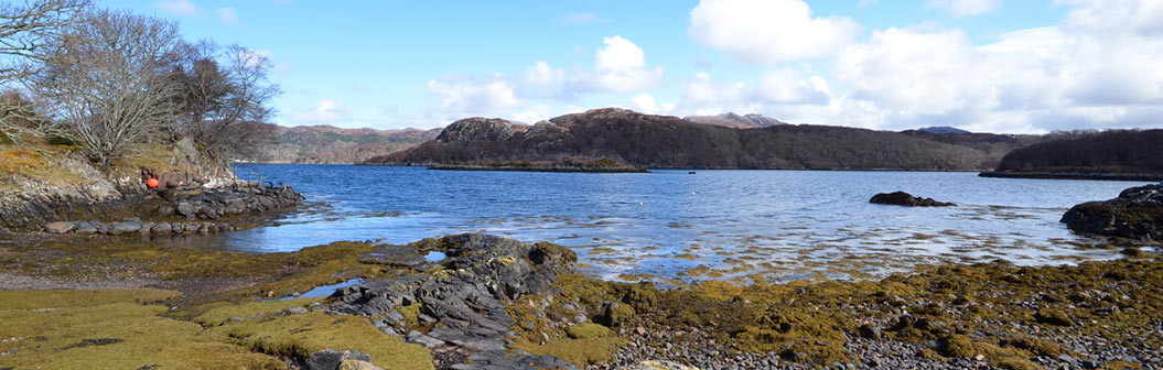 Loch Shieldaig (bottom of the garden)