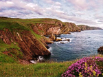 St Abbs Nature Reserve