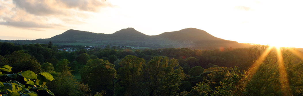 View to Eildon Hills
