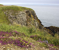 Burrow Head near Isle of Whithorn